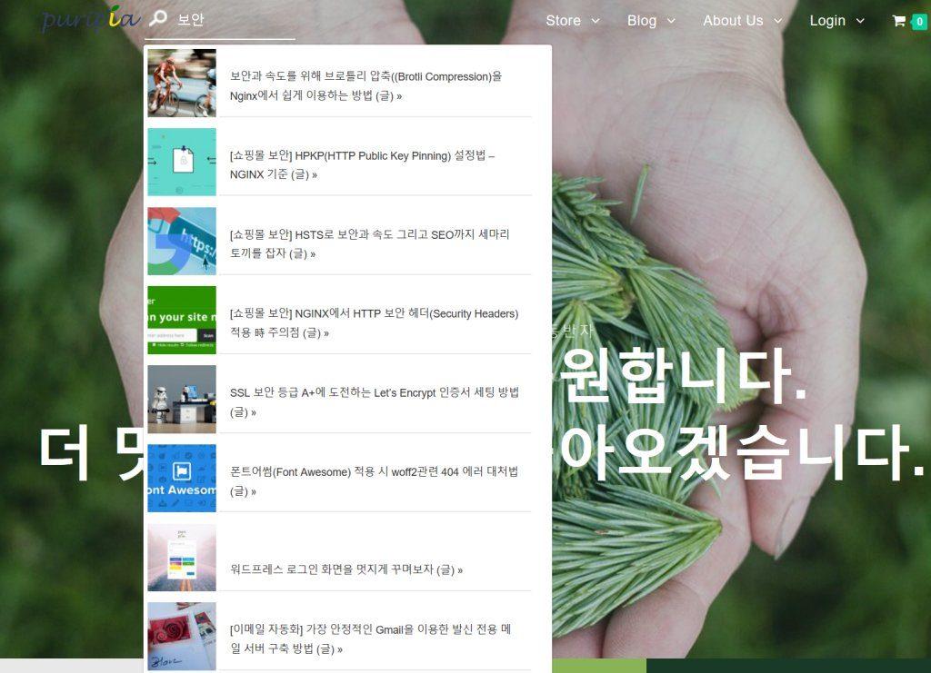 라이브 서치 플러그인  SearchWP Live Ajax Search 구현 모습